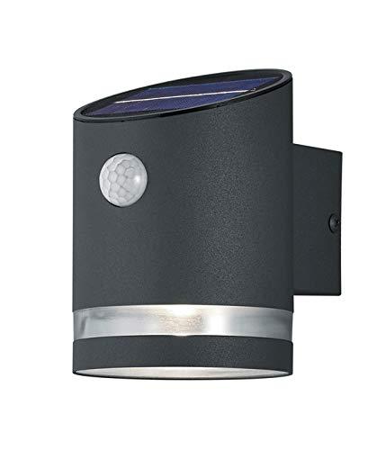 Reality Leuchten LED Solar Außenwandleuchte Salta R22231142, Kunststoff anthrazit, inkl. 3 Watt LED, Bewegungsmelder