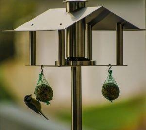 Besorge deinen Vögeln ein einzigartiges Vogelhaus online